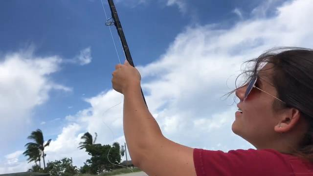 Video: What to do when waiting for Irma? Fly a kite