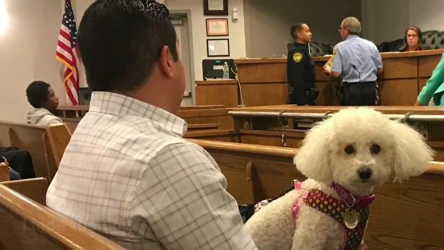 Belleville Municipal Court Judge Wilfredo Benitez ruled on Wednesday, Oct. 18, 2017 that Linda, the dog, be returned to her owners in Belleville.