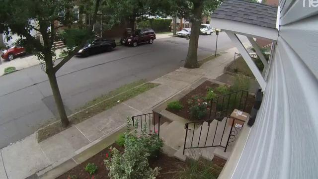 Video: Woman abandons cat-poop filled package in Belleville