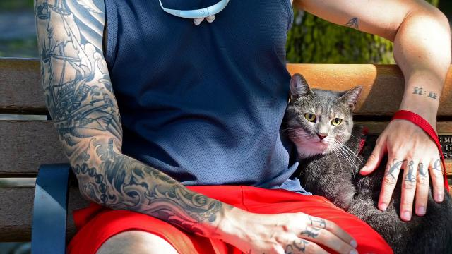 A tattooed man and his cat sitting on a park bench in Saddle Brook became Record photojournalist Tariq Zehawi's favorite photo of 2017.