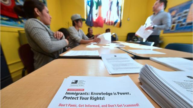 "WATCH: Undocumented 5 step ""emergency plan"""