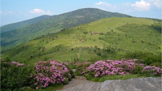 The Southern Appalachian Highlands Conservancy has just preserved in perpetuity 324 acres in the Highlands of Roan in view of the Appalachian Trail.
