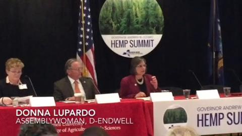 Assemblywoman Donna Lupardo, D-Endwell, speaks during a hemp summit held at Cornell University.