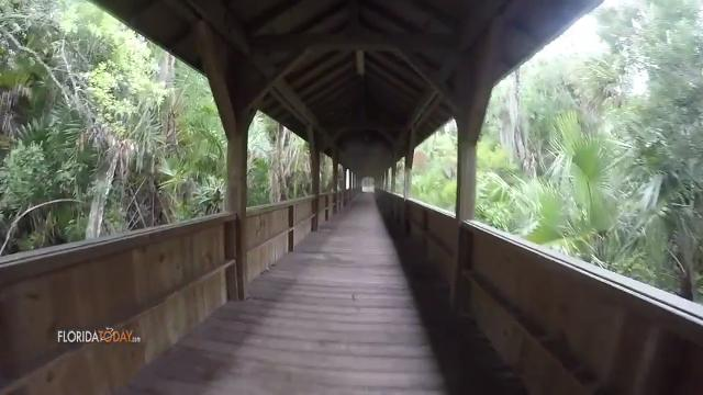 Florida Tech\'s Botanical Gardens Trail