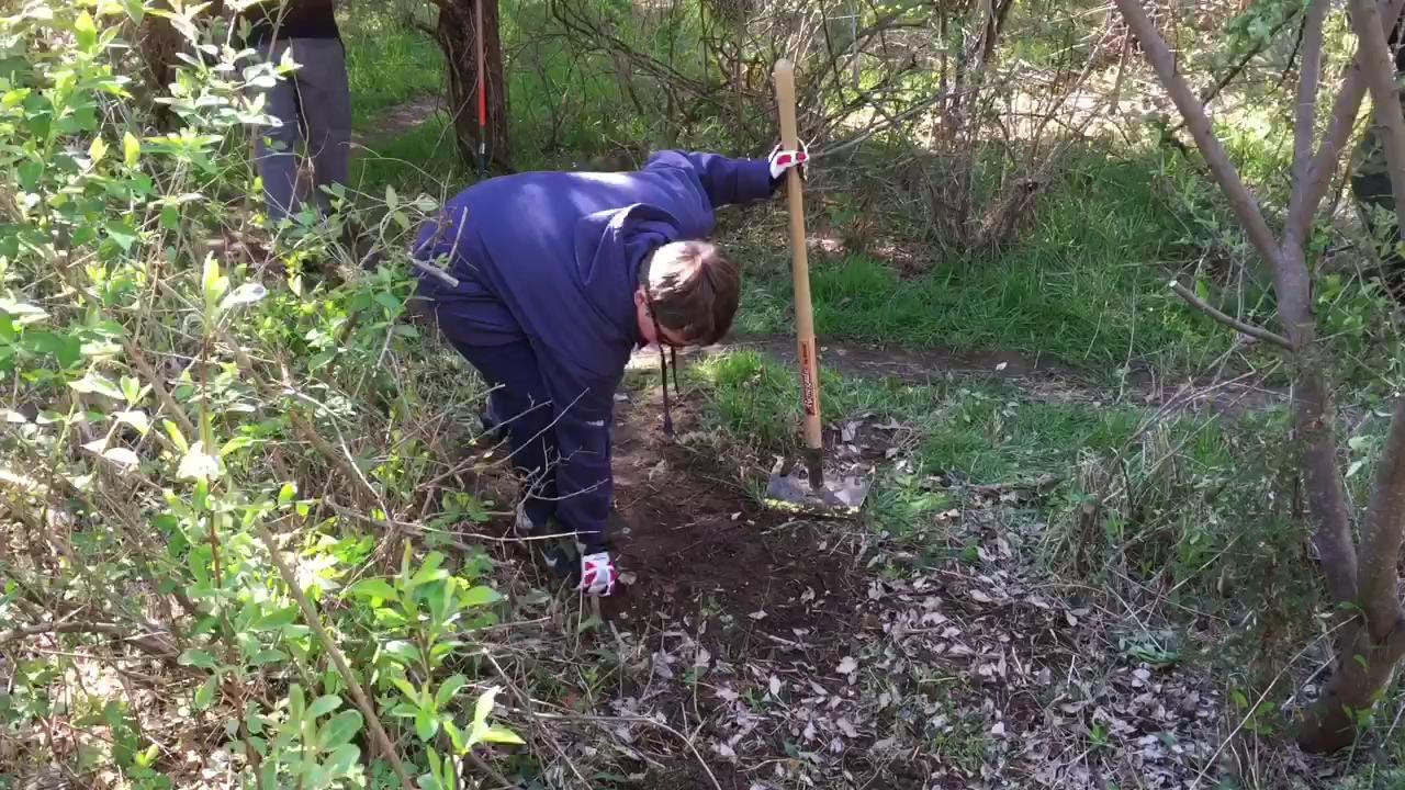 Volunteer crew maintain trails in Cherry Hill