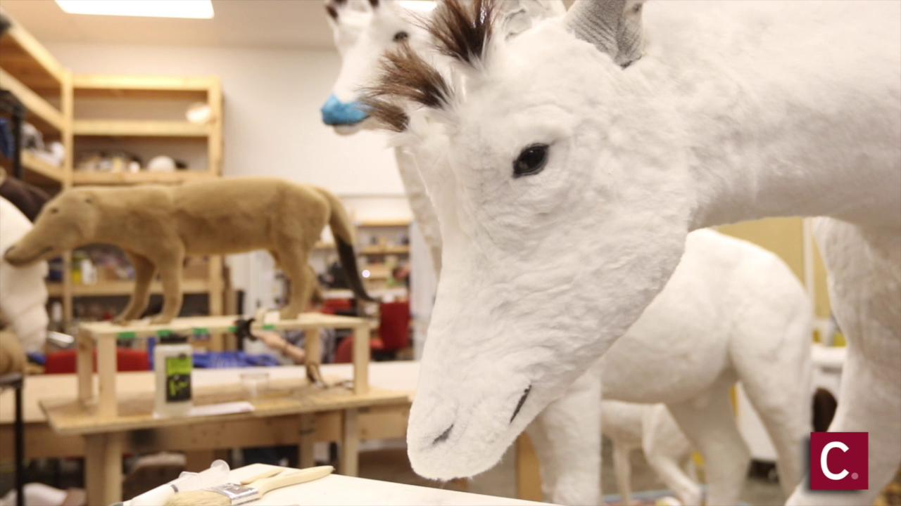 Artists hard at work to create Noah's animals for Ark