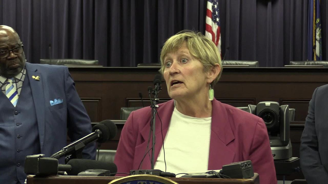 Rep. Mary Lou Marzian speaks in opposition to HB 520