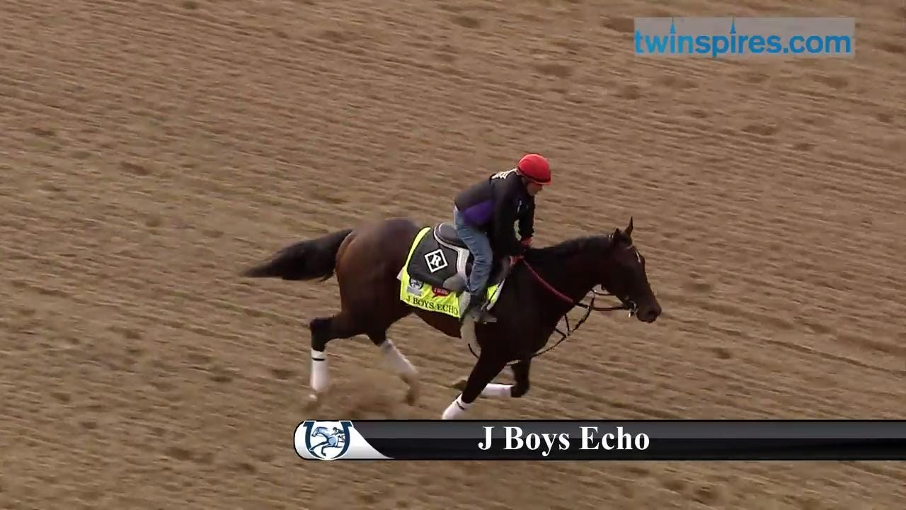 Kentucky Derby 2017 horses at Churchill | J Boys Echo
