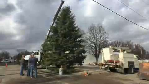A cherished annual tradition in Slater, Iowa, is to cut a giant evergreen from somebody's yard and stick it in the middle of the main intersection downtown.