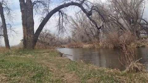 Xplore: Arapaho Bend Natural Area