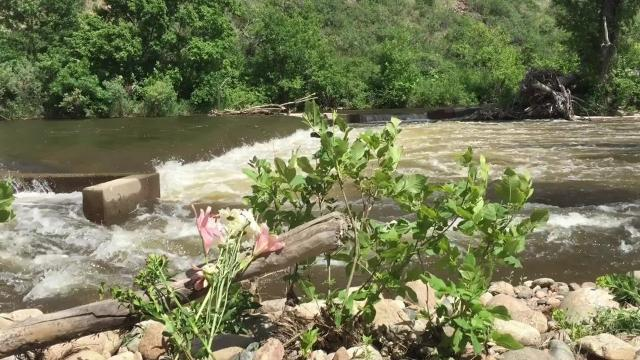 Teen's tubing death on Poudre River serves as safety reminder