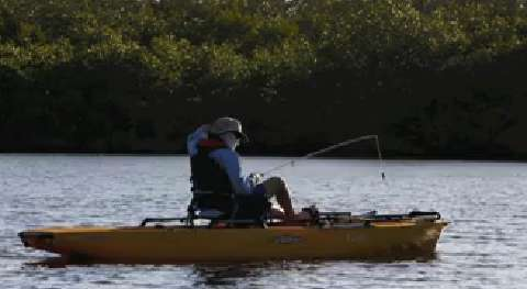 """Hobie Cat reps and local authors went kayak fishing in the waters off J. N. """"Ding"""" Darling National Wildlife Refuge on Sanibel Island Wednesday, May 14."""