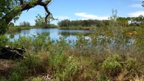 Insider's look at Galt Preserve near St. James City, Pine Island, Florida.