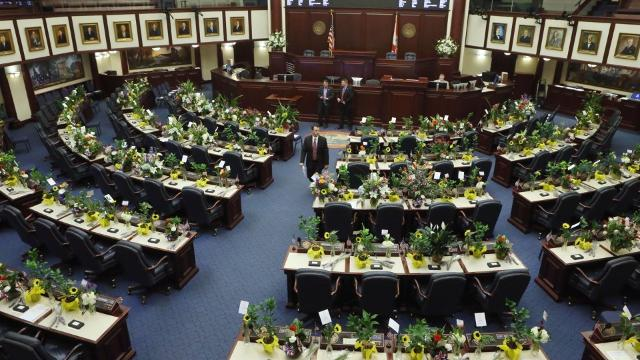 This is a look at the winners and loser from the 2017 Florida Legislative session.