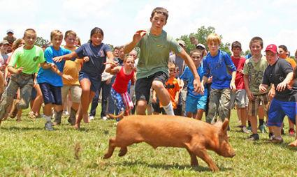The 57th annual Hillbilly Day in Mountain Rest on the Fourth of July with bluegrass music, clogging, and popular games visitors look forward to seeing. The log toss, egg toss, pig chase, greased pole climb, sack race, and tug-of-wars are some of the favorites.