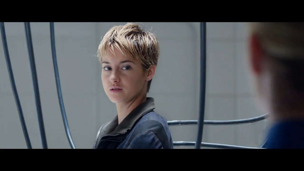 """The sequel to the original """"Divergent"""" film is scheduled to be released on March 20, 2015. The film stars Shailene Woodley, Theo James, Ansel Elgort and Kate Winslet."""