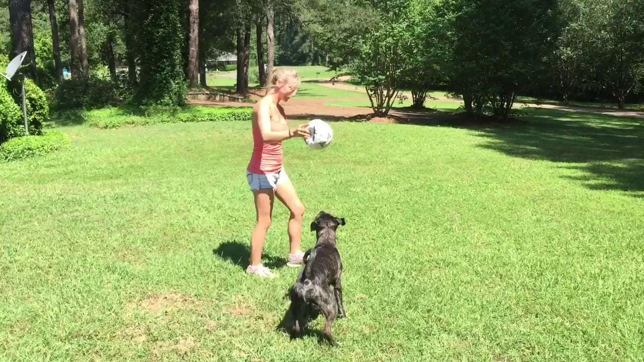 """Annie Thweatt of Madison talks about her dog Zeus, who plays Buddy in the film """"Texas Heart."""""""