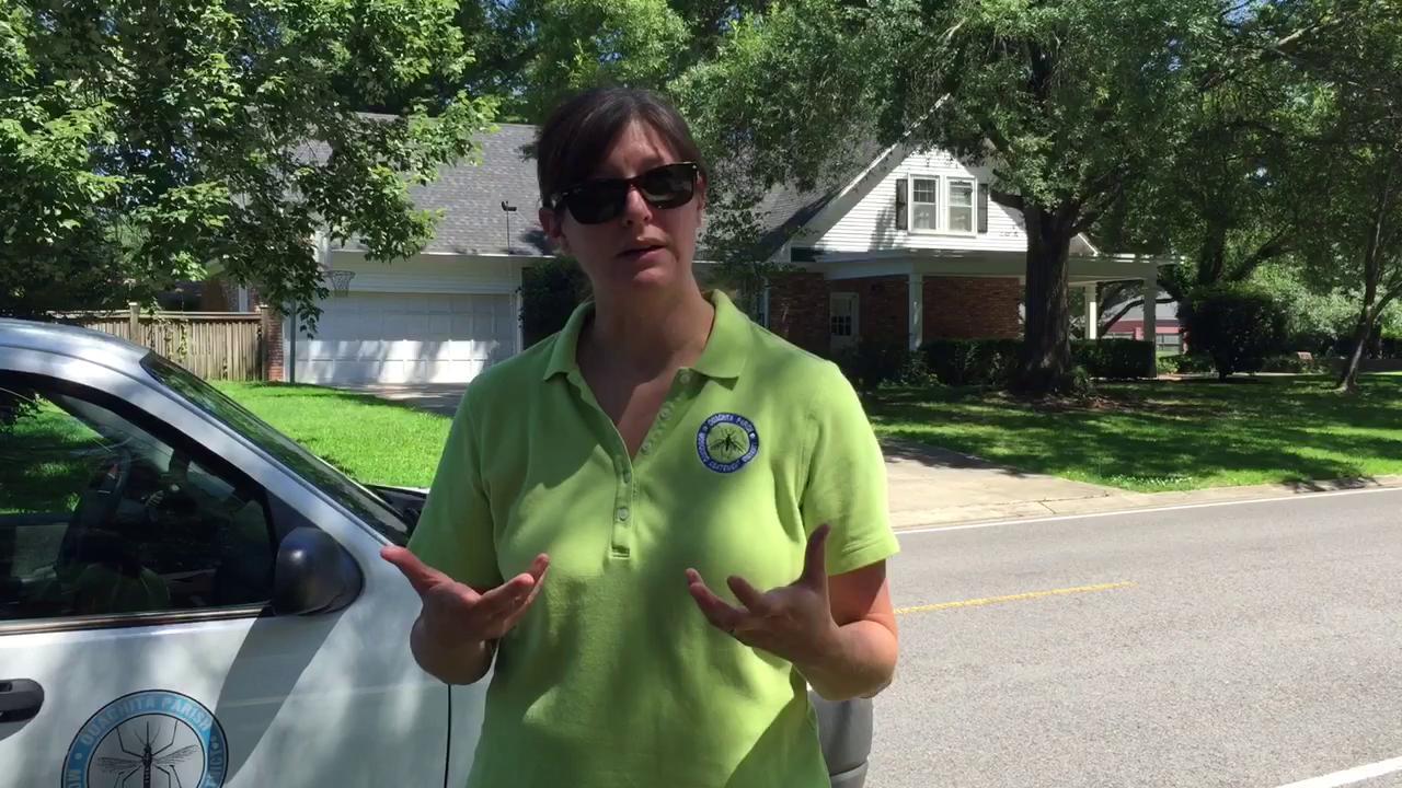 Mosquito Abatement director talks container survey