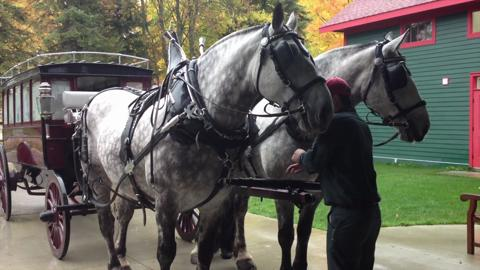 Take a stroll with the horses of Mackinac Island