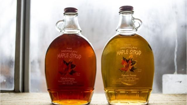 It's maple syrup time in Michigan.