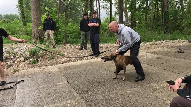 K-9 dogs and their handlers were trained in Marshall over three days, undergoing exercises in water, buildings and vehicles.