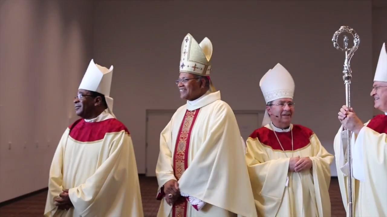 vatican investigation into complaints about memphis bishop draws