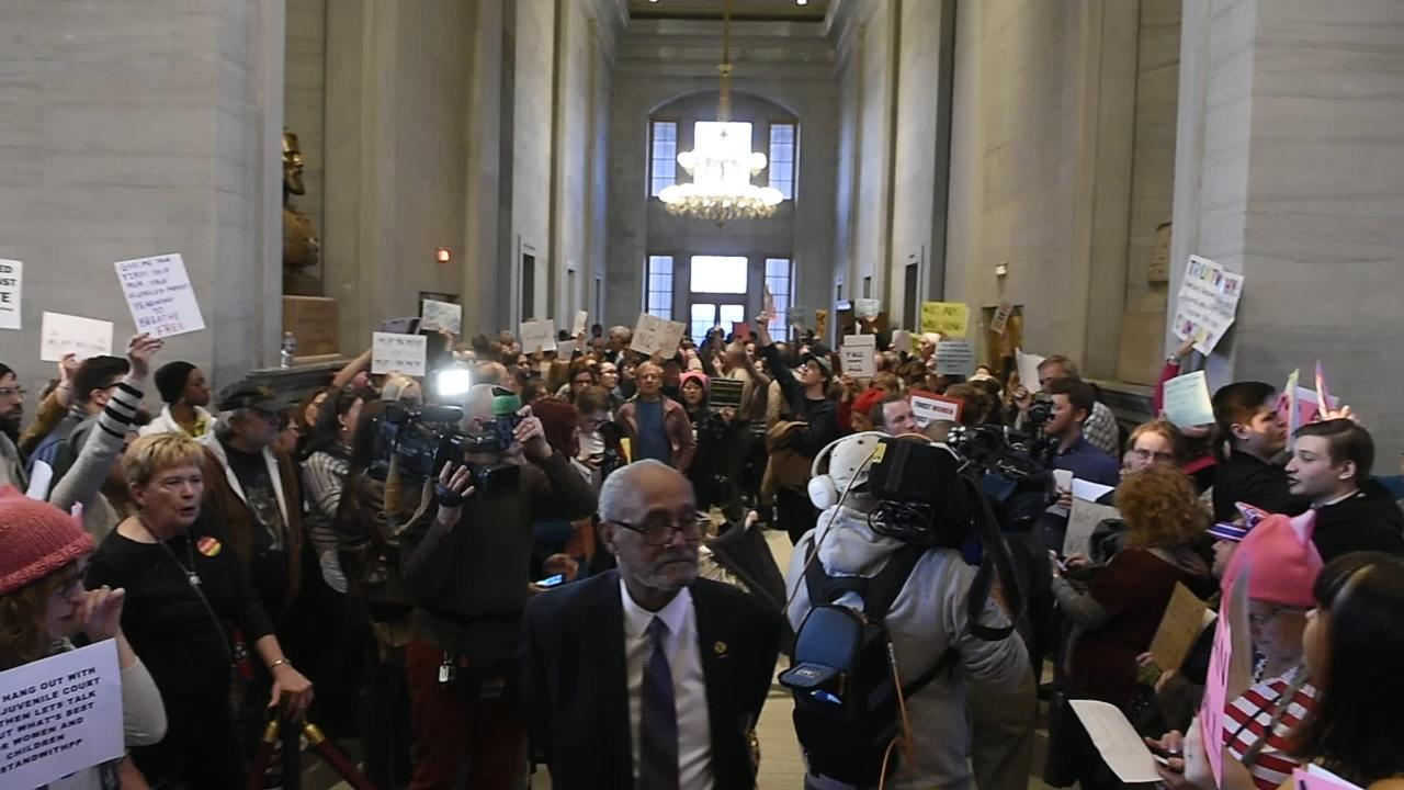 Protesters take to the Tennessee statehouse ahead of Bill Haslam's State of the State