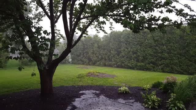 Heavy rain falls in Hockessin as thunderstorms pass through Monday.