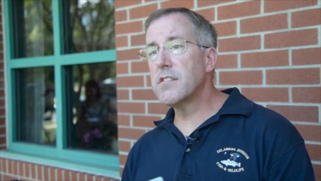 Delaware receives Zika prevention funding