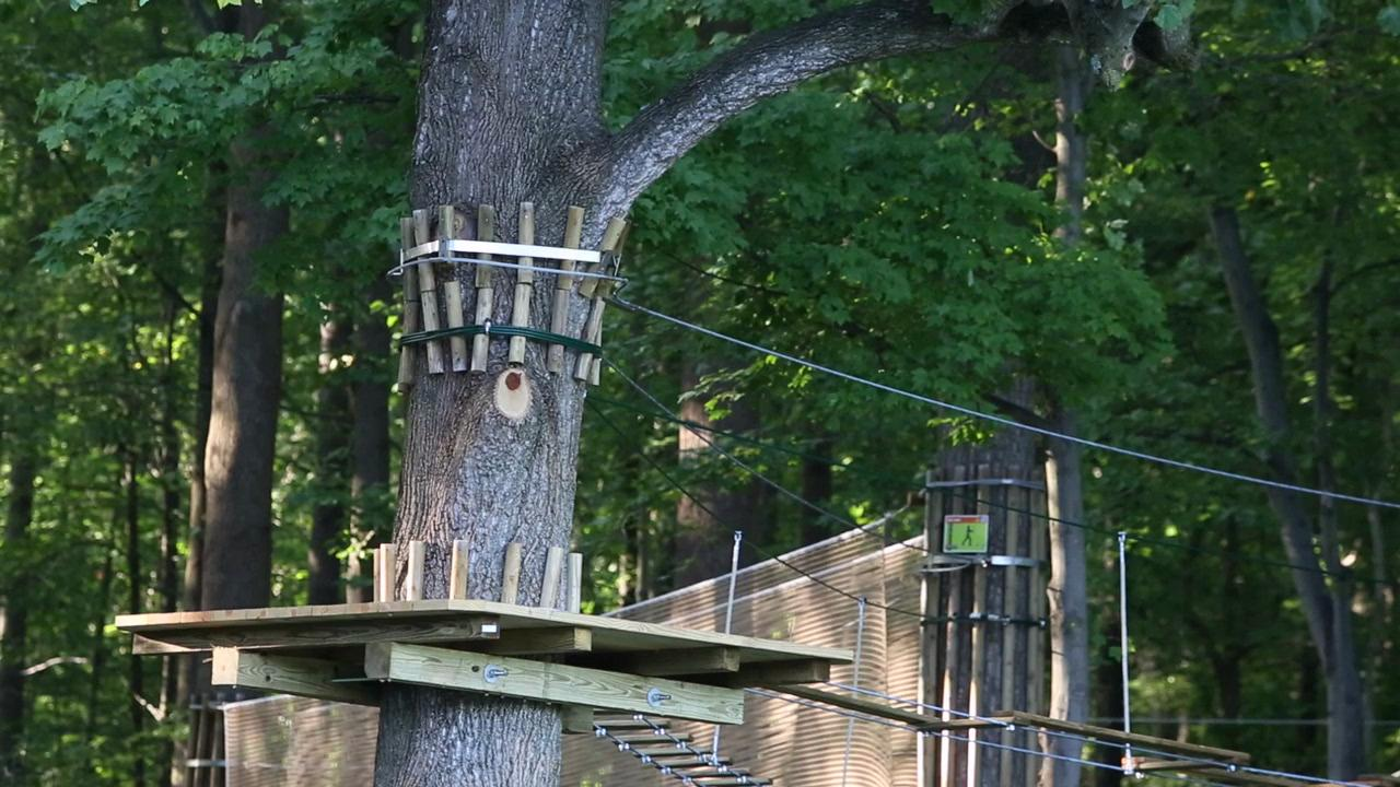Woman Who Died After Fall From Delaware S Go Ape Zip Line Platform Id D