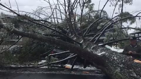 Raw video: Tree falls on Stanton home, truck