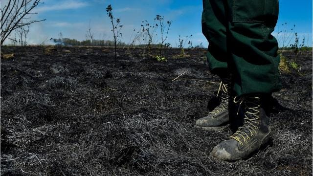 Through the month of April, the Ohio Division of Wildlife has been performing controlled  fires on select sections of prairie in Big Island Wildlife Area to help keep invasive species at bay.