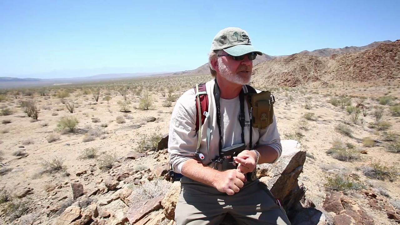 Citizen scientists joined researchers to study the climate change effects in Joshua Tree National Park.