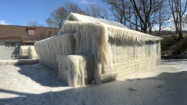 Webster homes covered in ice