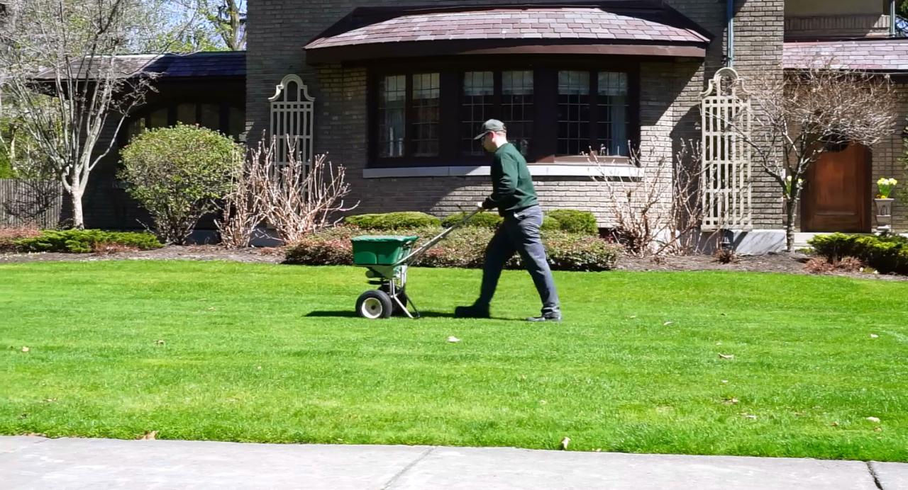 Laurie Broccolo gives you expert lawn care tips to give you a healthy lawn year round.