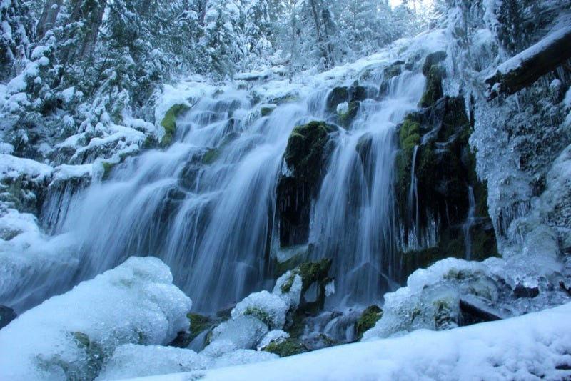 Proxy Falls Trail in winter