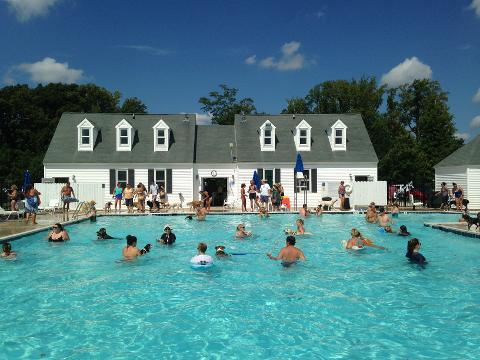 Dog Day at the pool in Ocean Pines