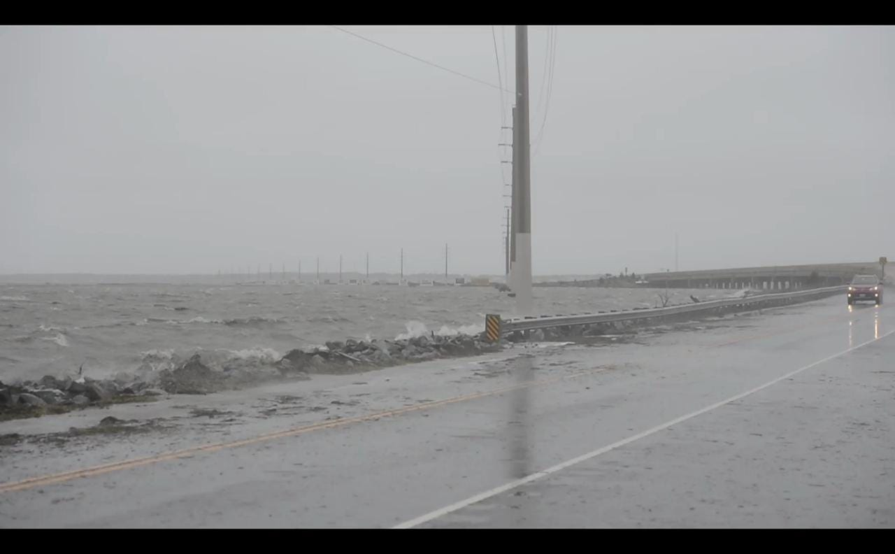 Storm brings coastal flooding on Chincoteague causeway. Ponies roam free on Assateague to avoid flooded areas.