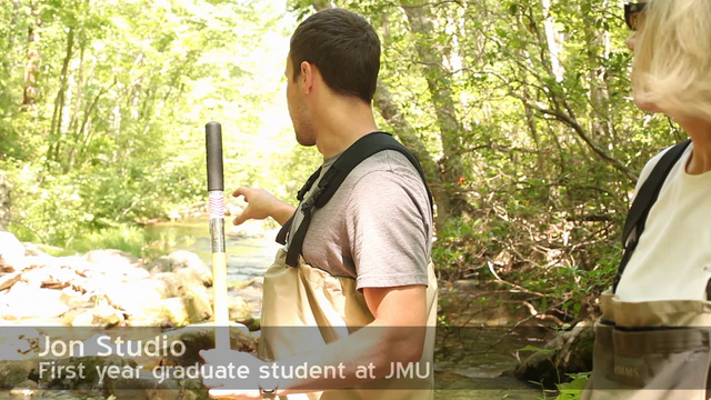 Scientists from JMU are examining the effects on fish in Augusta County streams from acid rain, even decades later.
