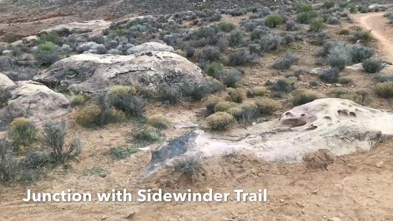 Located at the Cove Wash Trailhead in the Santa Clara River Reserve, the Precipice Trail and part of the Barrel Roll Trail form a 1.7-mile loop.