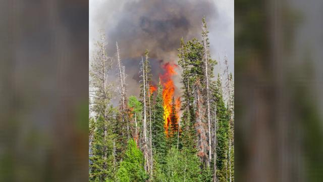 Since June 17, the fire at Brian Head has been tearing through thousands of acres of land.