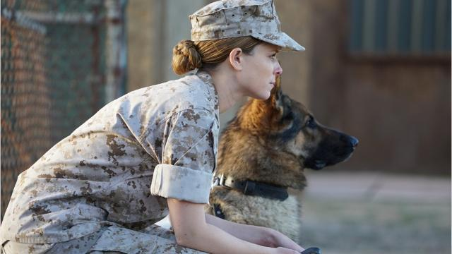 Video: 'Megan Leavey' features Rockland native's story