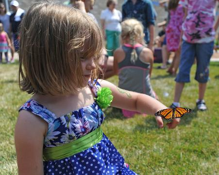 The Childrens Museum of Fond du Lac had a summer celebration Saturday. A new butterfly garden was opened and 50 Monarch butterflies were released. Many of them went right to the flowers and landed on people in attendance.