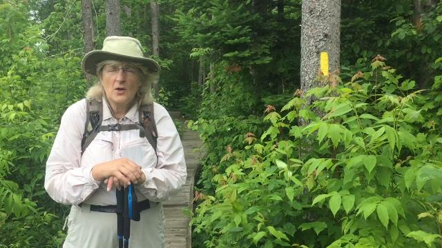 Ice Age Trail volunteer Gail Piotrowski talks about the Ice Age trail and efforts to build new paths.