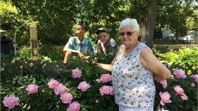For 55 years, Peggy Rentmeister has grown hundred of peonies in the shadow of a junkyard. Then her husband died. And then she got unexpected help from two neighbor boys. (Sharon Roznik/USA TODAY NETWORK-Wisconsin)